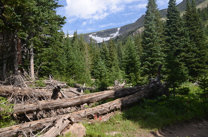 Mountain view from Arapahoe Pass Trail (1)