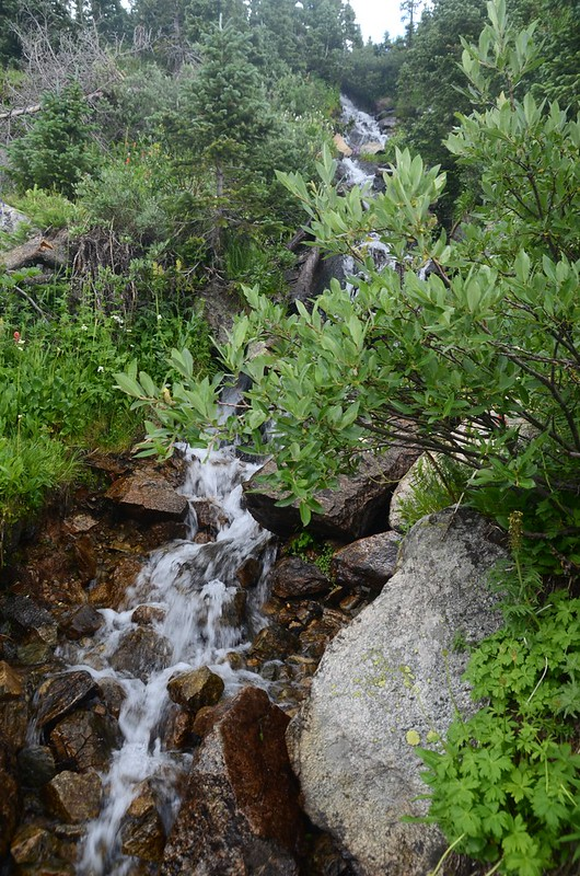 Waterfall stream on the Arapaho Pass trail (1)