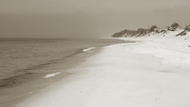 beach in sepia
