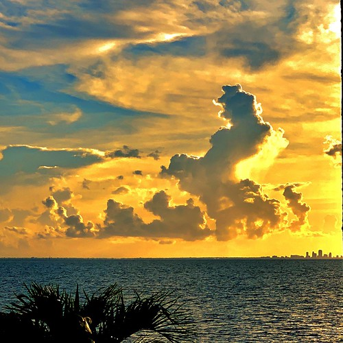imran imrananwar blessed blessings waterfront ocean water islandlife beach seaside imagination animals cloudshapes clouds landscape seascape tampabay saintpetersburg tampa florida