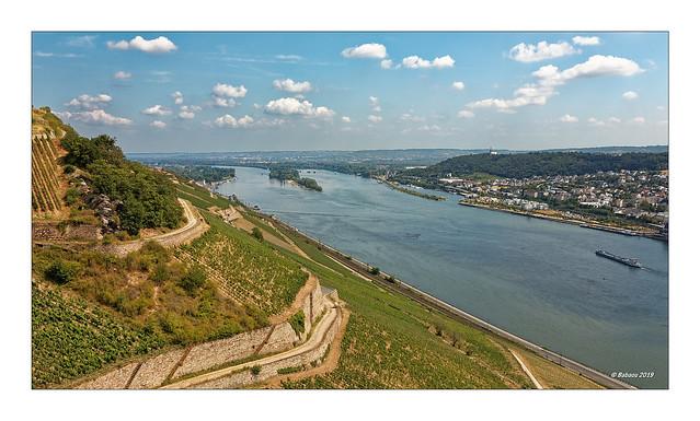 VATER RHEIN - Rüdesheim - Bingen
