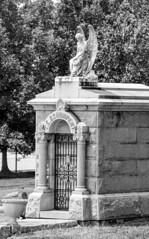 Schumpert Grave