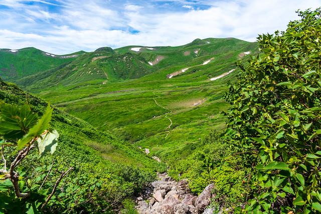 幸治郎沢上段より千畳ヶ原を見下ろす