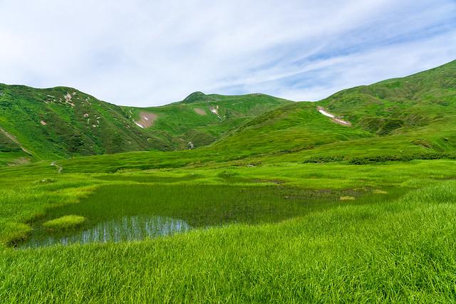 千畳ヶ原の池塘