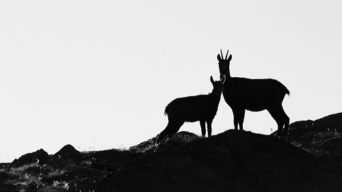 Highland shadows