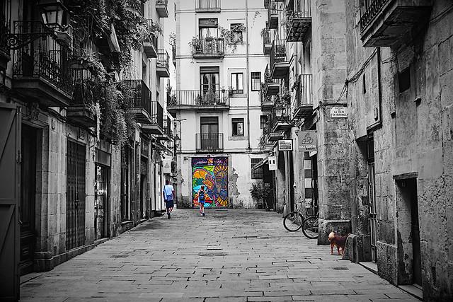 Barceloneando: Carrer De L'Esparteria