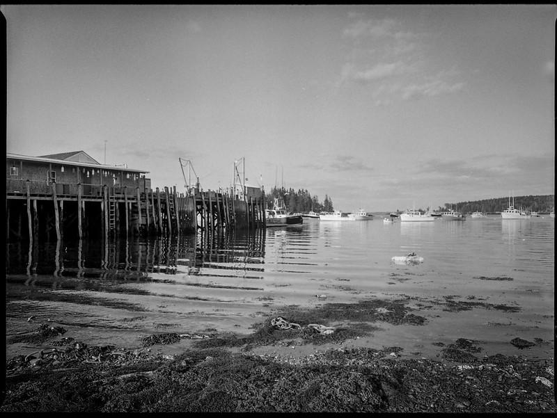 pier, harbor, rippled water, Owl's Head, Maine, Mamiya 645 Pro, mamiya sekor 45mm f-2.8, Kodak TriX 400, HC-110 developer, mid July 2019