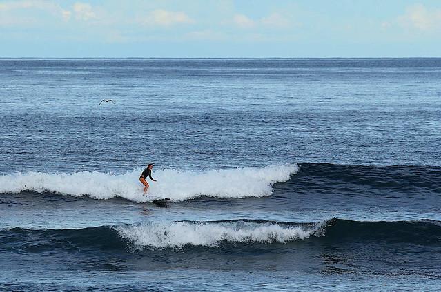 Surfer & Friend