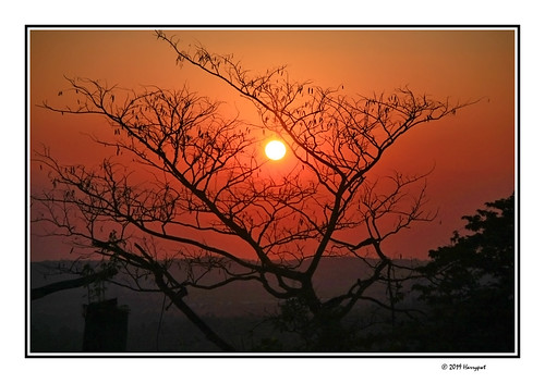 harrypwt salatiga sunrise kopeng night light canon40d 40d 18200 centraljava borders framed paintinglike tree nature