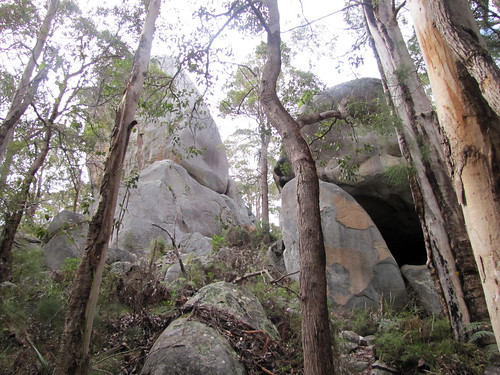 Granite & Forest - Mt Hallowell Track, Denmark, Western Australia | by Red Moon Sanctuary