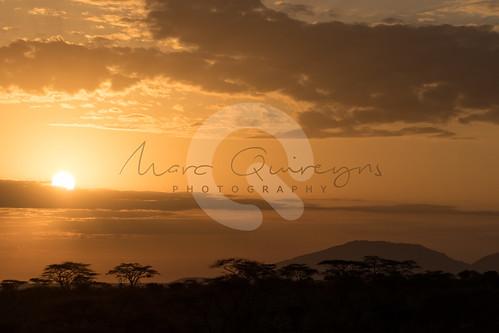 isiolocounty zonsopgang landen kenia buffalospringsnationalreserve sunrise
