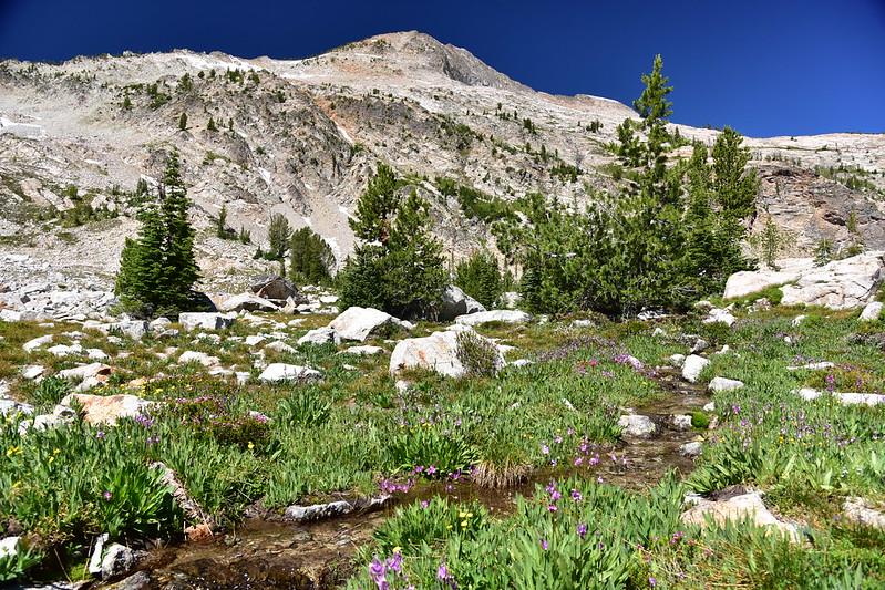 Creek near Twin Lakes