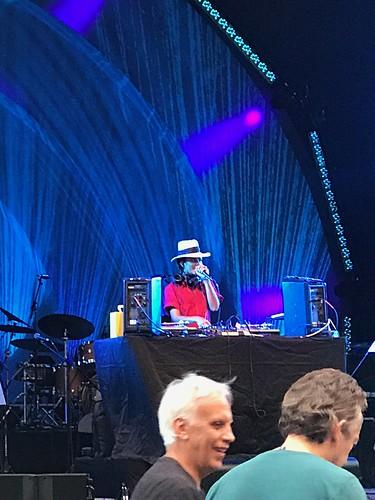 Celebrate Brooklyn-Marvin Gaye Tribute-Prospect Park-DJ Natasha Diggs-20190809-1134