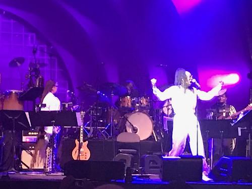 Celebrate Brooklyn-Marvin Gaye Tribute-Prospect Park-Siedah Garrett-20190809-1143