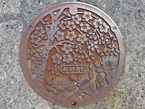 Akasawa Hayakawa Yamanashi, manhole cover (山梨県早川町赤沢のマンホール)
