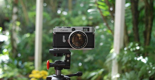 Canon P 35mm rangefinder - Canon 50mm 1:1.2