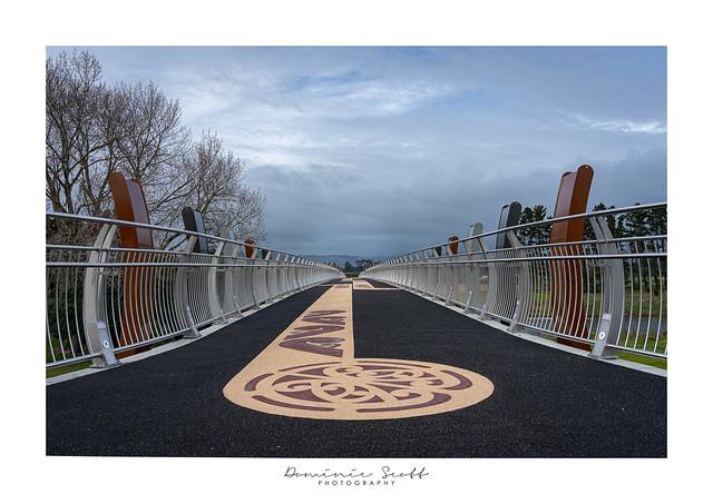 Photo Challenge - Image 2 - He Ara Kotahi Bridge