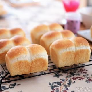 ミニ食パン 20190810-DSCT2506 (3)
