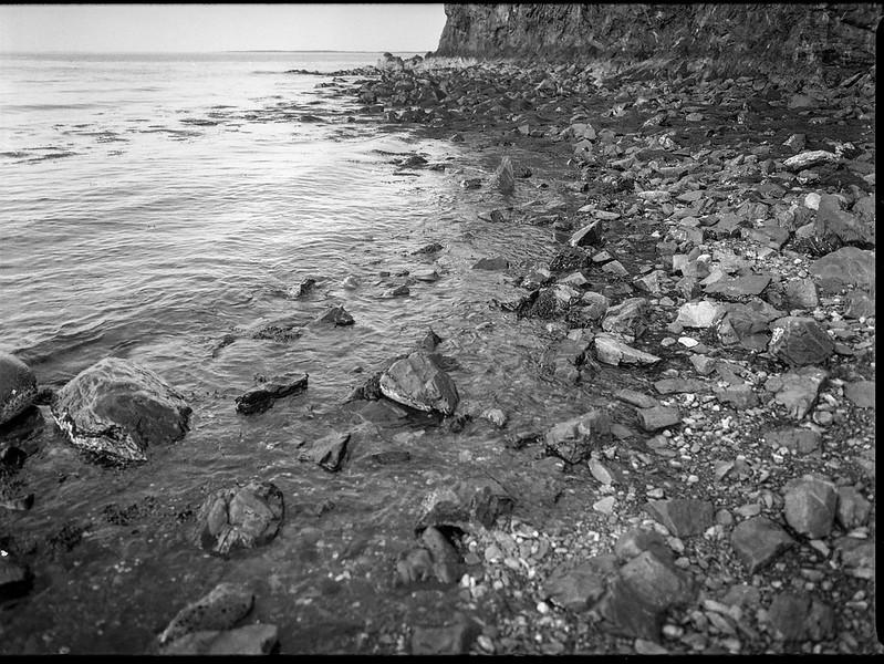 looking down, shoreline, stones and pebbles, low tide, Owl's Head, Maine, Mamiya 645 Pro,  mamiya sekor 45mm f-2.8, Kodak Tri-X 400, HC-110 developer, mid July 2019