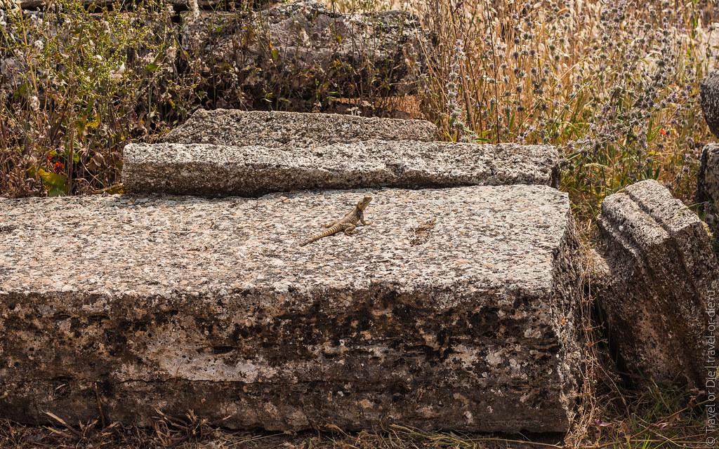 Ancient-City-Hierapolis-Turkey-5393