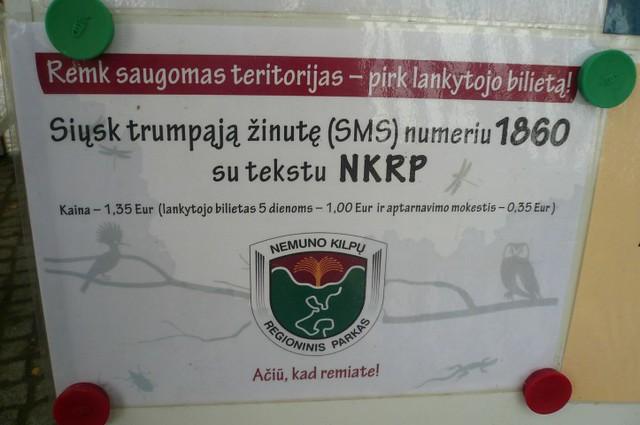 P1690931