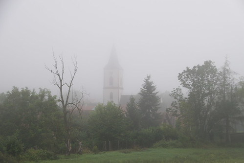 Matin sous le brouillard
