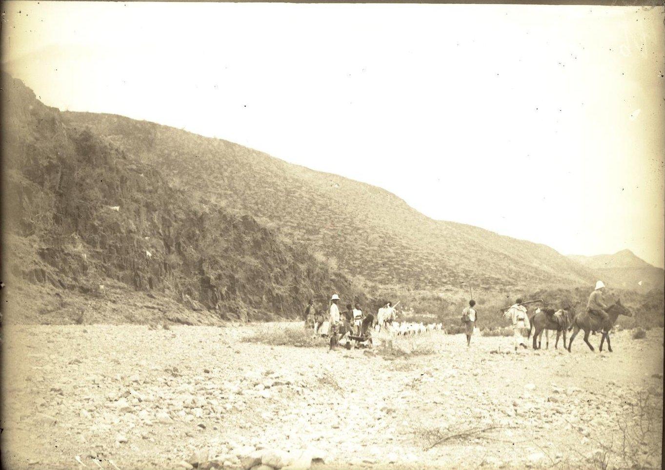 139. В сомалийской пустыне. Алиаде (общий вид каравана)