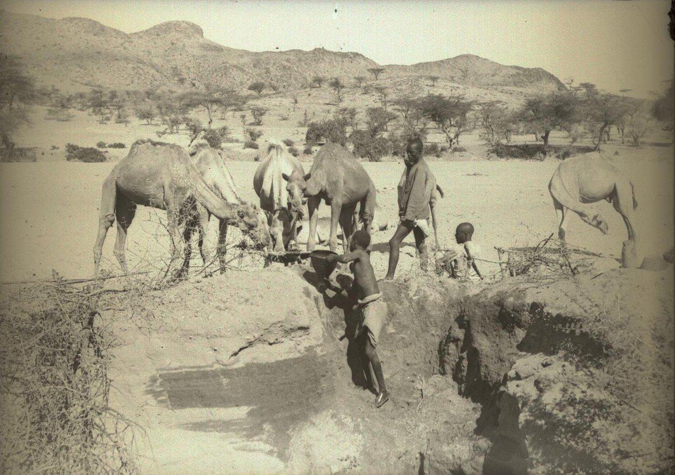 124. В сомалийской пустыне. Доставание воды из колодца