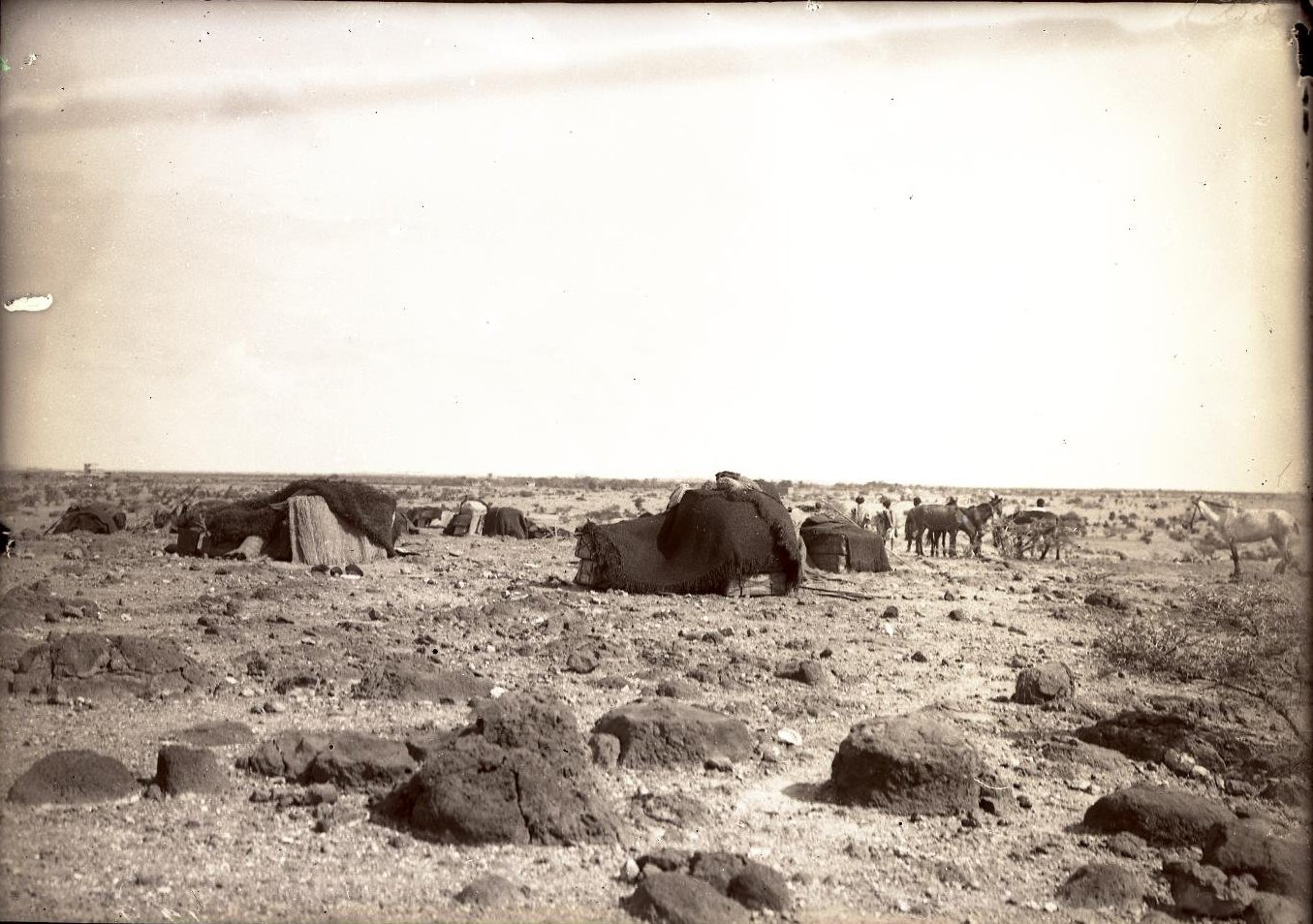 122. В сомалийской пустыне. Бивуак в Амбули