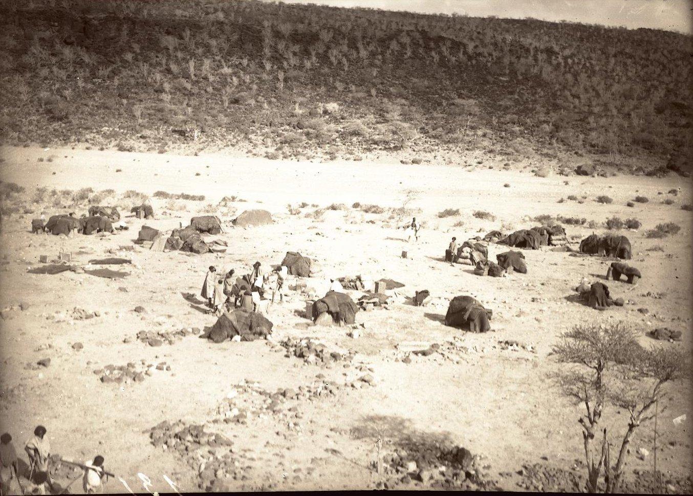 135. В сомалийской пустыне. Привал в Биаде