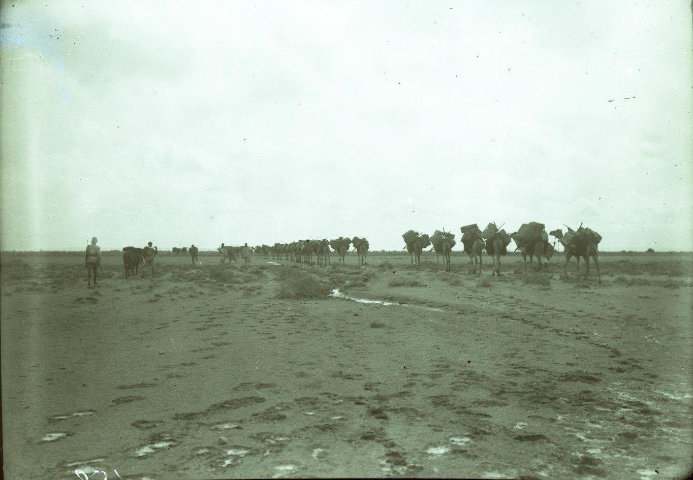 132. В сомалийской пустыне. Салман. По грязи