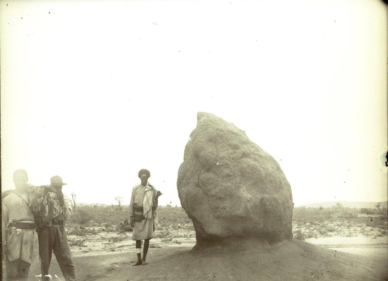 131. В сомалийской пустыне. Далай-Мале. Термитова куча