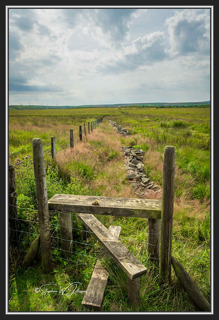 SJ2_0999 - Lancashire countryside