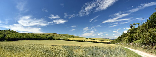 firle eastsussex southdowns nationalpark sussex sunny july