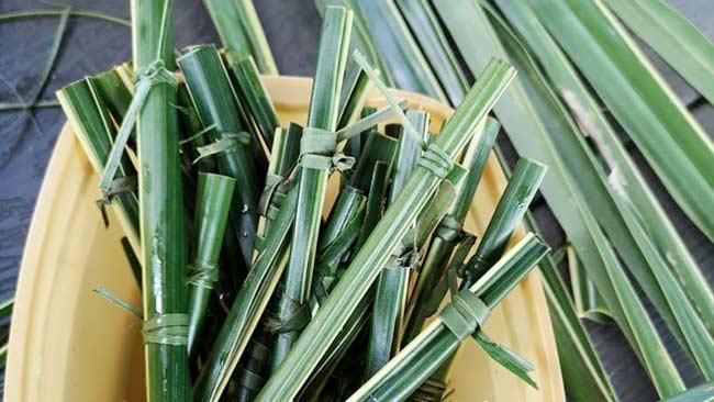 Sedotan-daun-kelapa