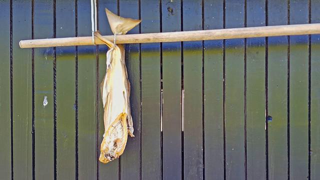 20190709_180002 Trockenfisch