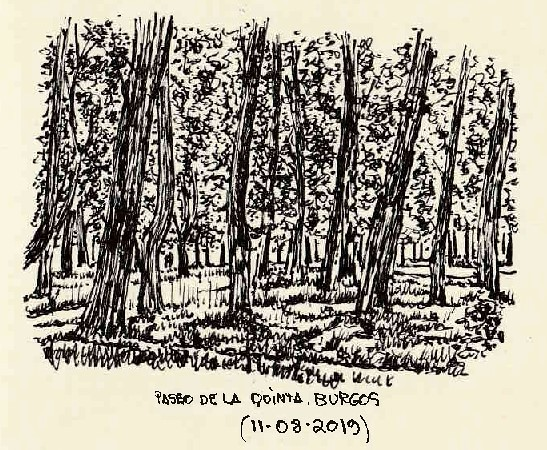 Burgos. Paseo de la Quinta