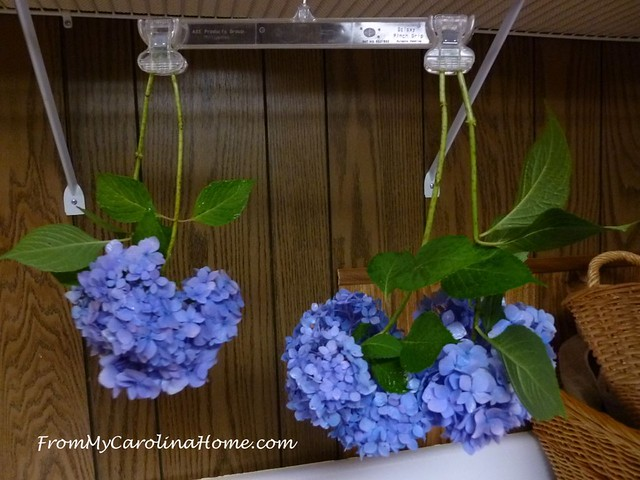 Drying Flowers at FromMyCarolinaHome.com