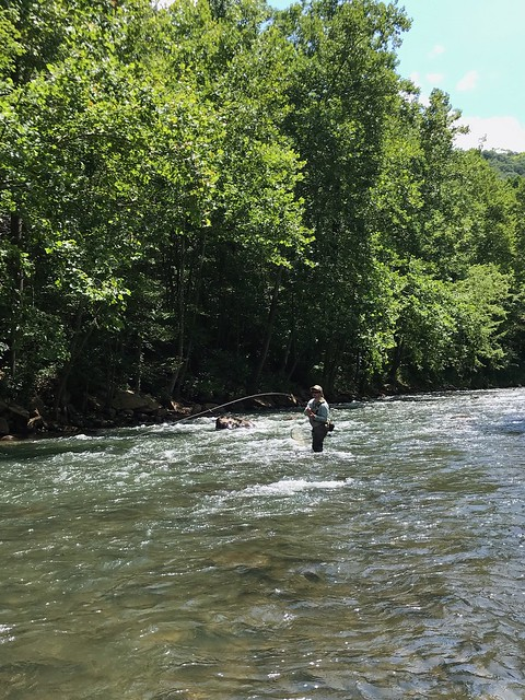 North Branch Potomac Fly Fishing