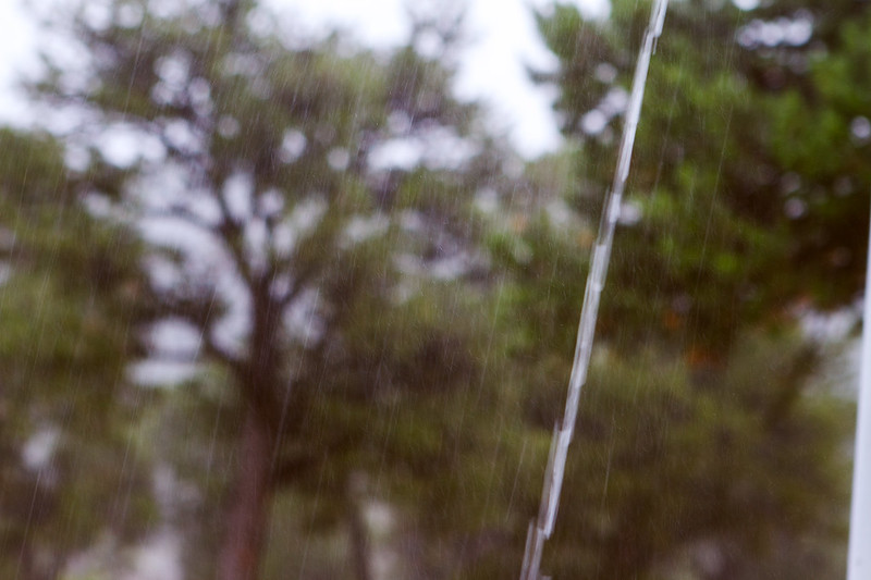 Rain-3-7D1-081119