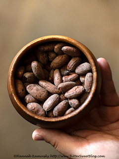 Dandelion Chocolate - Cacao Beans