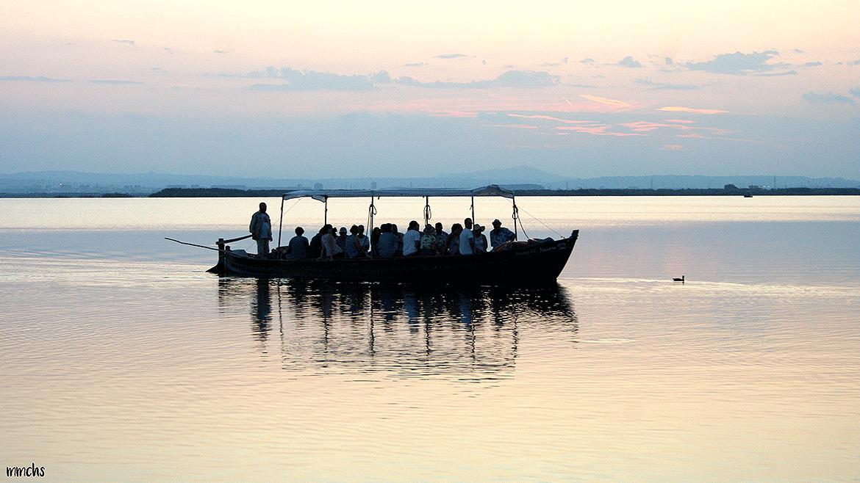 paseos en barca por la Albufera de Valencia