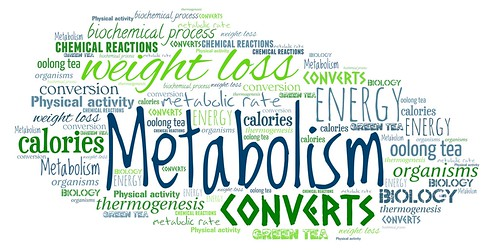 Metabolism | by EpicTop10.com