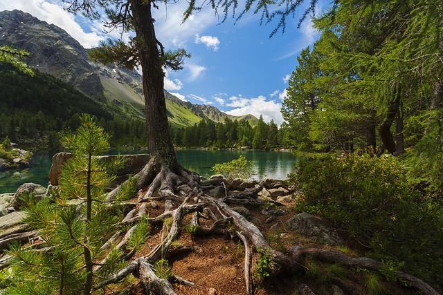 Saoseo lake..(Svizzera)