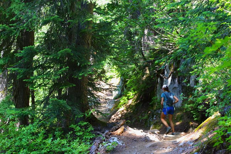 IMG_4293 Trail Runner on Cascade Pass Trail
