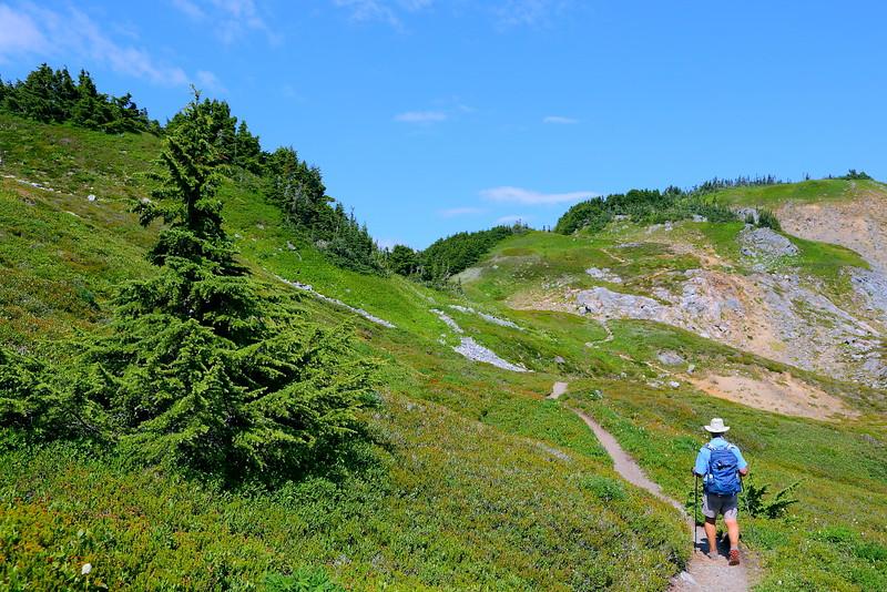 IMG_4046 Cascade Pass Trail