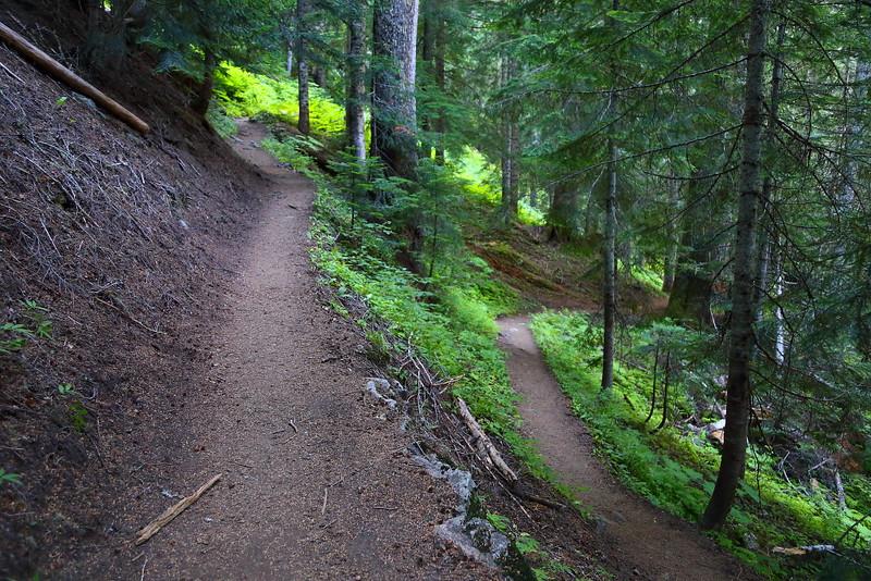 IMG_3753 Cascade Pass Trail, North Cascades National Park