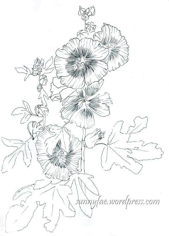 hollyhock fountain pen drawing