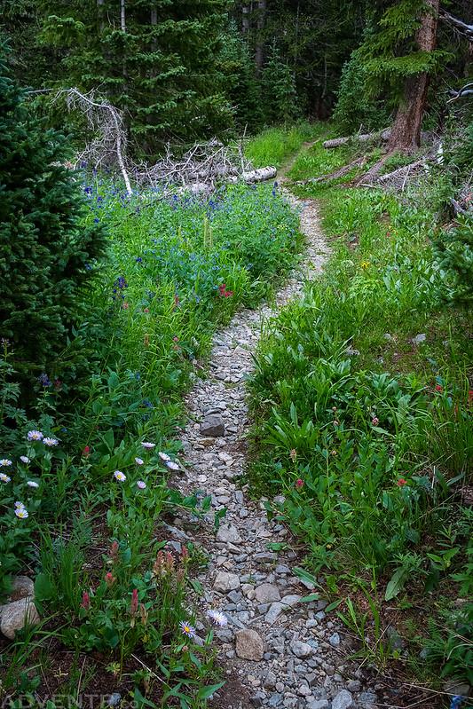 Frenchman Creek Trail