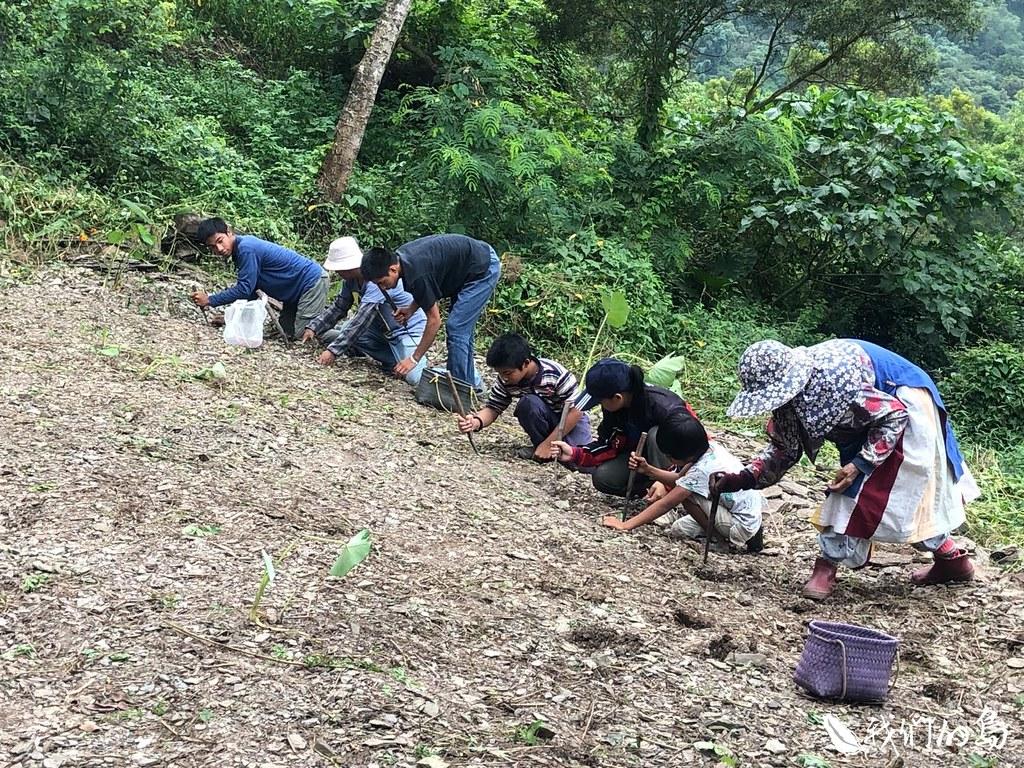 奶奶帶領所有人一起禱告。禱告後,無論男女老幼,大家都是彎腰面向土地,把花生種下去。